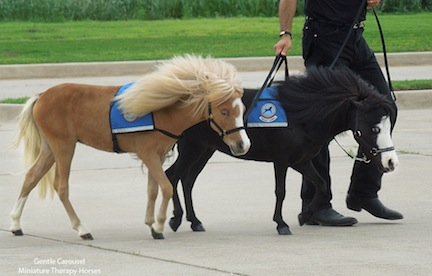 Harriet and Magic arrive in Moore, Oklahoma to help the children who survived the May tornado that destroyed their schools.