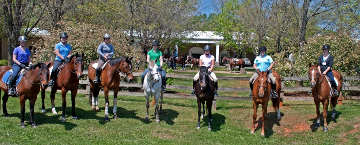 Alumnae riders found themselves back in the saddle at the 2012 Sweet Briar College reunion. (Photo by Margret Wood '13)