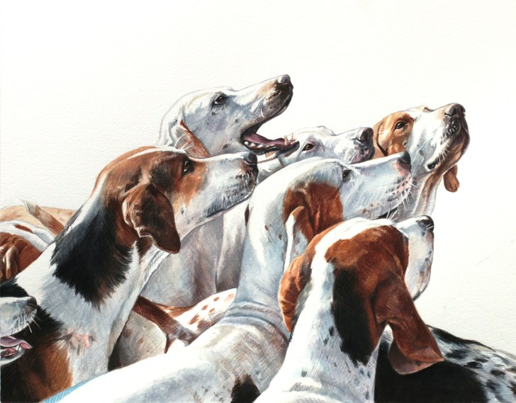 """The Huntsman's Hounds"" — Melinda loves to capture the hunting hounds at the kennel or working at the hunt. (Photo courtesy of Melinda Brewer)"