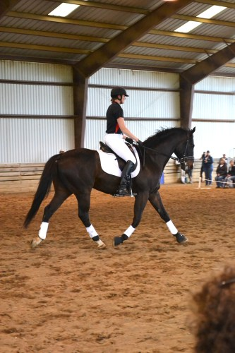 Dr. Jill Stowe and Dundee took part in the mini-clinic.