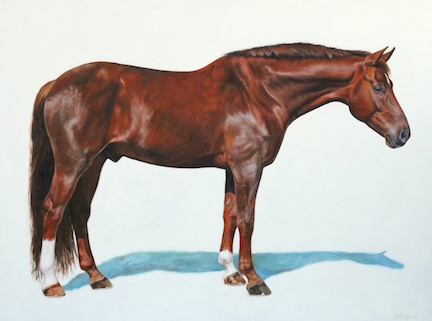 """Commission of Samba, shown as Simply Cool — Oil on Belgian Linen, 36""""x48"""""""