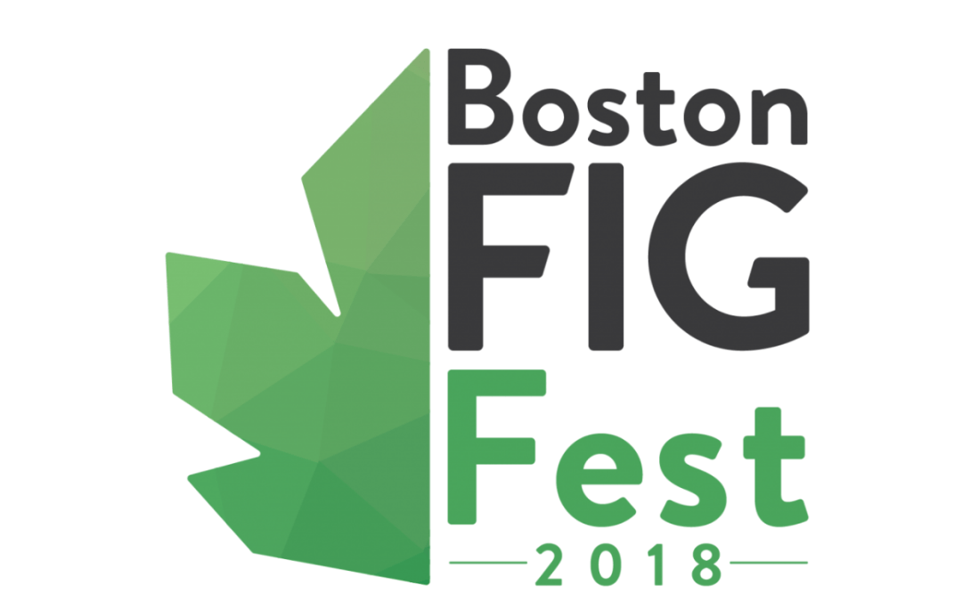 Of Indies and Figgies: A Recap on BostonFIG 2018