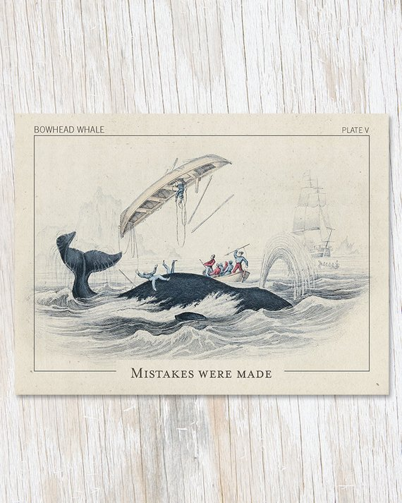 """A vintage image of several whalers failing to successfully hunt a whale, with text reading, """"Mistakes were made."""""""