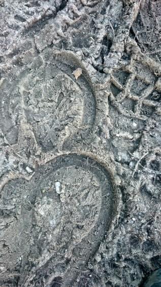 Muddy footprint