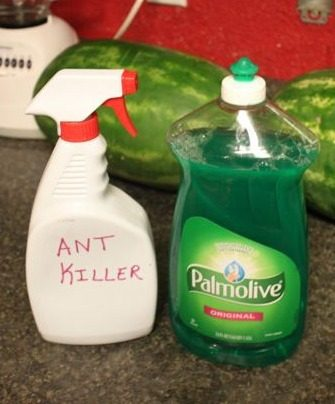 Using Palmolive to Kill Ants
