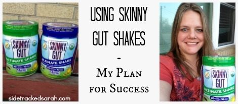 My Plan for Success Using Skinny Gut Shakes