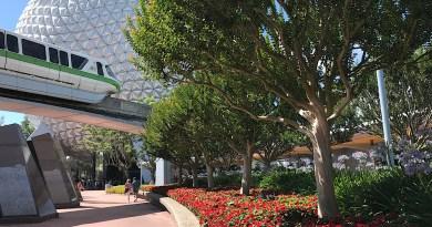 Las 5 cosas que más extraño en Disney World