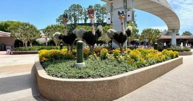 Eliminación de estaciones de lavado de manos y otros cambios observados esta semana en los parques de Disney