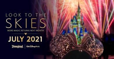 Los fuegos artificiales regresan a Disney World y Disneyland