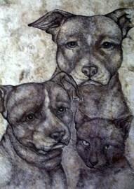Willow, Wyatt and Pinkus