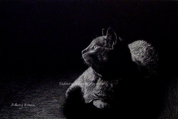 Title: Isa, Artist: Sidney Eileen, Medium: white pencil on black paper