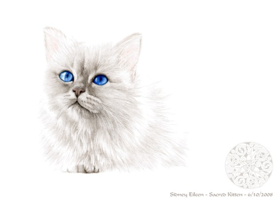 Title: Sacred Kitten, Artist: Sidney Eileen, Medium: colored pencil on paper