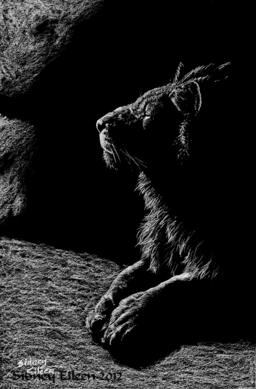 Title: In the Mouth of the Cave, Artist: Sidney Eileen, Medium: white pencil on black paper