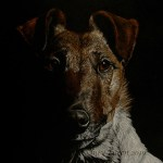 "Donation Commission - Terrier, 9""x12"" colored pencil on black paper, by Sidney Eileen"