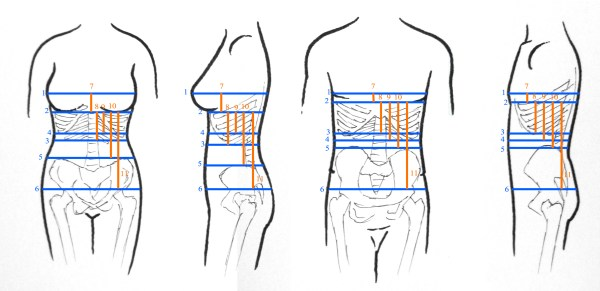 How to Measure for a Corset, by Sidney Eileen