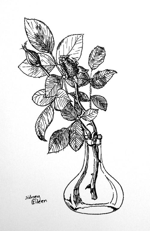 Title: Rose Buds - Pilot Ultra Fine Felt, Artist: Sidney Eileen, Medium: pen on paper