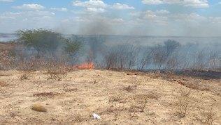 Fogo-consumiu-vegetação-seca