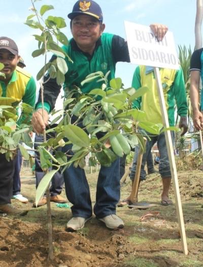 Bupati Sidoarjo Saiful Ilah saat menanam pohon sawo kecik di Tanjoeng Poeri eks TPA di kawasan lingkar timur