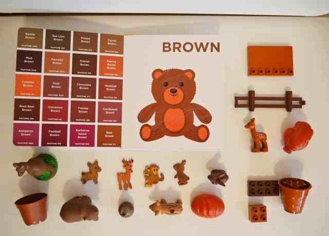 認識色票顏色小遊戲-棕色