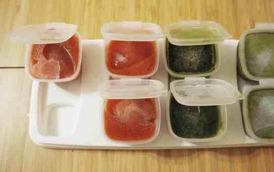 副食品冰塊磚 製成麵條(製麵機)
