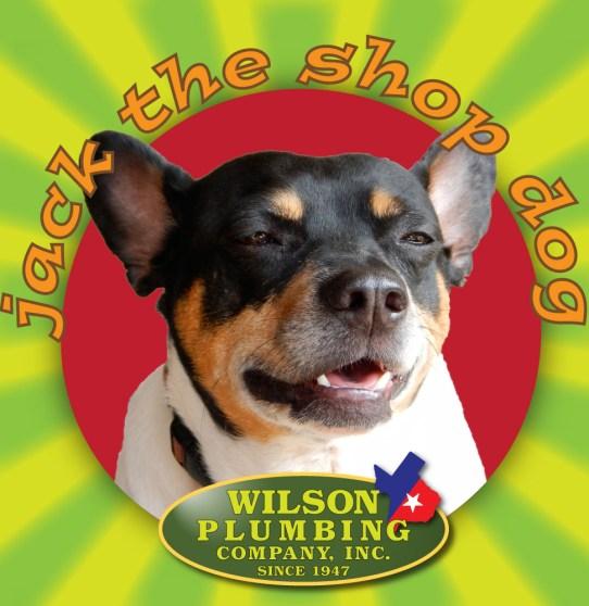 jack the shop dog