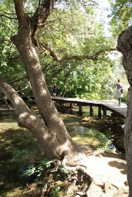 Holzsteg Nationalpark Krka Kroatien