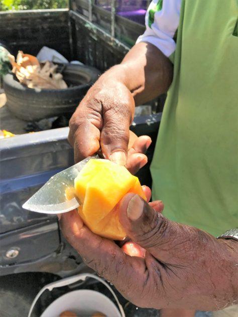 Unbekannte Frucht testen