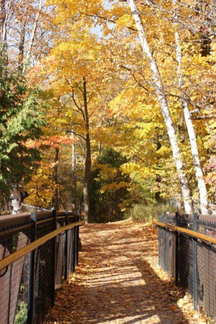 Montmorency Falls Park