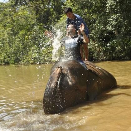 _DSC0841 - Version 2 - Il danse avec les éléphants - thailande, hotels, a-faire