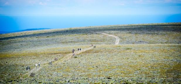 gasp-3374 - Bonaventure, pour mieux découvrir la Gaspésie! - quebec, featured, destinations, canada, a-faire