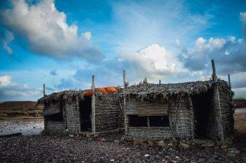 socotra-4456 - L'île de Socotra, le dernier paradis perdu! - yemen-asie, asie, a-faire