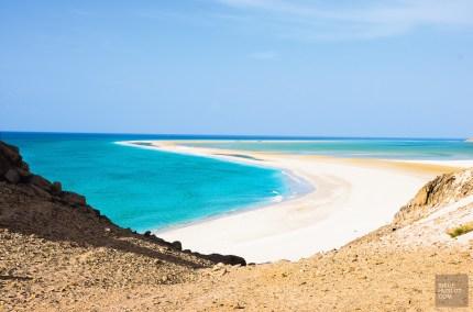 socotra-4593 - L'île de Socotra, le dernier paradis perdu! - yemen-asie, asie, a-faire