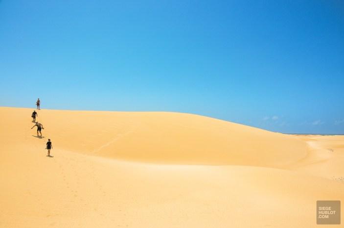 socotra-5093 - L'île de Socotra, le dernier paradis perdu! - yemen-asie, asie, a-faire