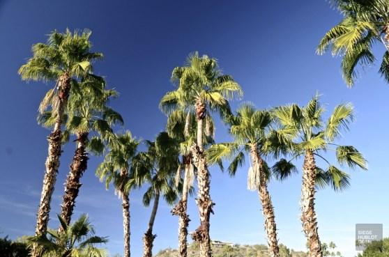 DSC_0251 - L'Arizona de A à Z - etats-unis, featured, destinations, arizona