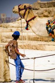 SHegypte-19 - Les merveilles de l'Égypte - featured, egypte, destinations, afrique, a-faire