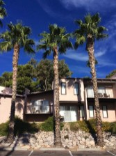 Extérieur chambres - Westward Look Wyndham - Tout sur Tucson - Amérique, États-Unis, Arizona
