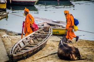 hommes religieux barque vache - varanasi - L Inde du Nord en quatre étapes - Asie, Inde