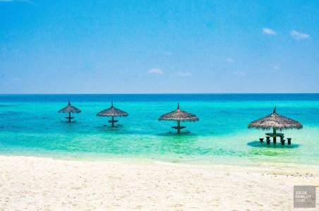 bar mer - Centara ras fushi - Les Maldives, le grand luxe en plein ocean Indien. - Asie, Maldives