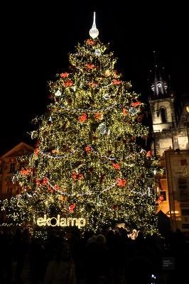 Arbre de Noel - Prague, République tchèque - Marchés de Noël - Europe, Autriche, République tchèque, Slovaquie