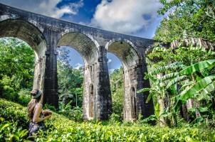 coconut time - The, train et pont - Sri Lanka, au cœur de l ile - Asie, Sri Lanka