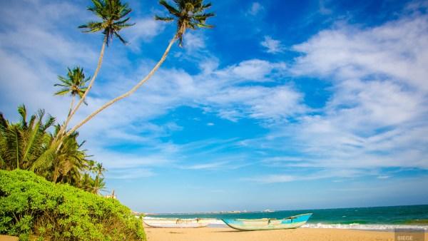 plage palmiers bateaux - La cote sauvage de Tangalle - Les plages du Sri Lanka et plus encore - Asie, Sri Lanka