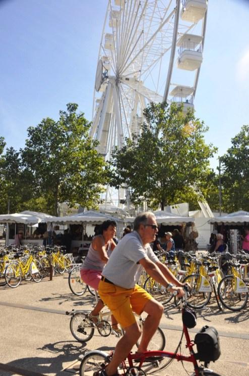 Les vélos - La Rochelle - Destination Nouvelle-Aquitaine - France, Europe