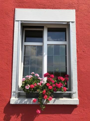 Maisons colorées - Visite guidée - Bâle, une ville au coeur de trois pays - Destination, Europe, Suisse
