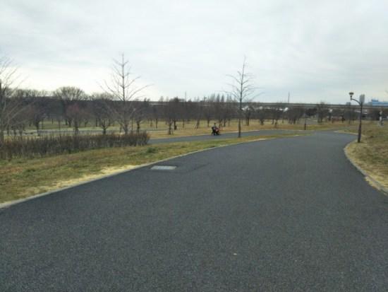 舎人公園の歩道