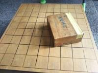 久しぶりに将棋をやったら面白かった。大人になっても親子で対局できるので子供にもやらせてみたい