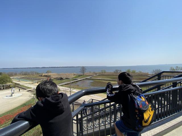 霞ヶ浦総合公園は風車あり景色もよく楽しめた