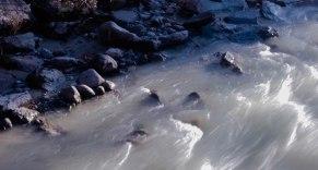 Whistler February 2015