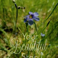 Your Beautiful Story