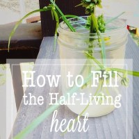 Living a Full Life with a Half Heart