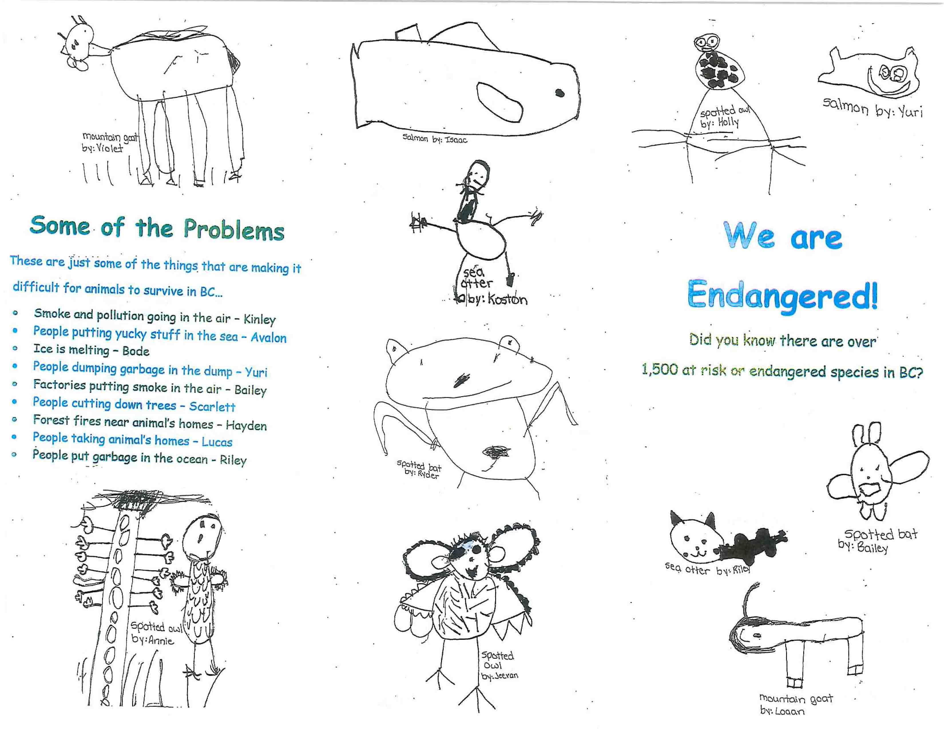 Environmental Education Archives